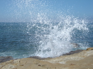 Point_loma_aug06_008_1