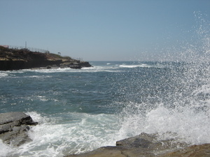 Point_loma_aug06_011