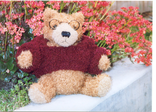 Smart Bears Sweater